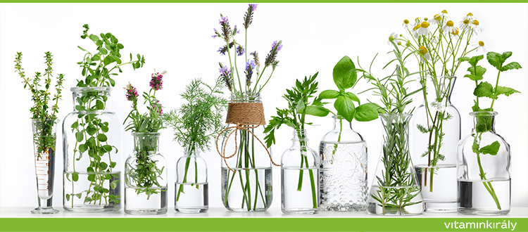 Kínai gyógynövényes orvoslás? Hogyan erősítenek a gyógynövények?